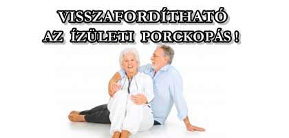 VISSZAFORDÍTHATÓ AZ ÍZÜLETI PORCKOPÁS!