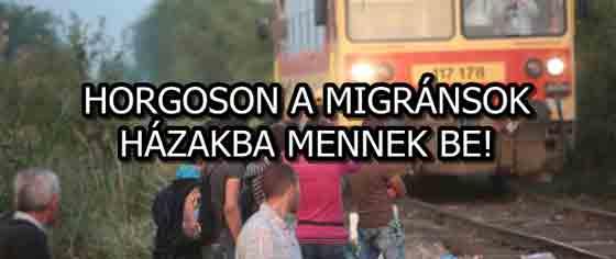 HORGOSON A MIGRÁNSOK HÁZAKBA MENNEK BE!