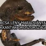 FURCSA LÉNY MARADVÁNYAIRA BUKKANTAK OROSZORSZÁGBAN