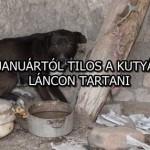 JANUÁRTÓL TILOS A KUTYÁT LÁNCON TARTANI