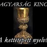 A MAGYARSÁG KINCSEI – A kettétépett nyelv!