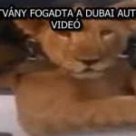 FURA LÁTVÁNY FOGADTA A DUBAI AUTÓSOKAT