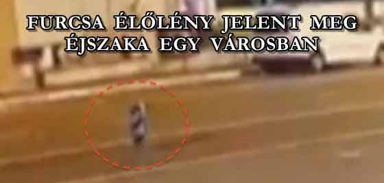 FURCSA ÉLŐLÉNY JELENT MEG ÉJSZAKA EGY VÁROSBAN.
