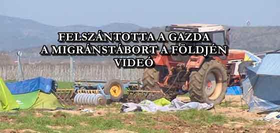 FELSZÁNTOTTA A GAZDA A MIGRÁNSTÁBORT A FÖLDJÉN - VIDEÓ
