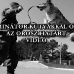 TERMINÁTOR KUTYÁKKAL ŐRZIK AZ OROSZ HATÁRT – VIDEÓ