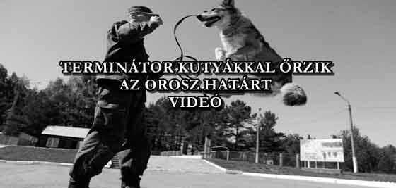 Az orosz határ őrzéséhez a katonák nem akármilyen segítségét kapnak. Szupererős kitenyésztett terminátor kutyák védik velük az egyes szakaszokat. A kutyák Terminátorai két faj a farkas és a kutya párosításából jöttek létre a véletlen következményeként.
