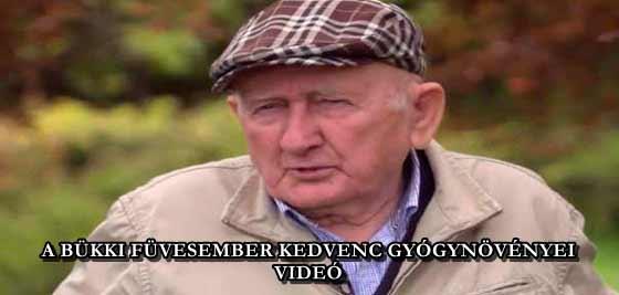 A BÜKKI FÜVESEMBER KEDVENC GYÓGYNÖVÉNYEI - VIDEÓ