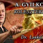 A GYILKOS KOLESZTERIN.
