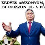 KEDVES ASSZONYOM, LASSAN BÚCSUZZON EL A FÉRJÉTŐL