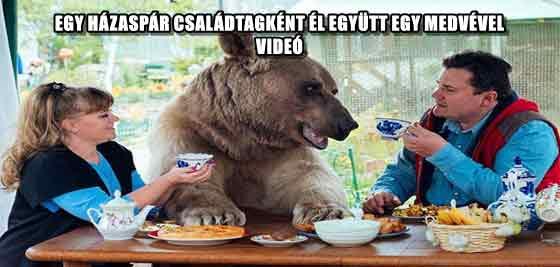 EGY HÁZASPÁR CSALÁDTAGKÉNT ÉL EGYÜTT EGY MEDVÉVEL - VIDEÓ