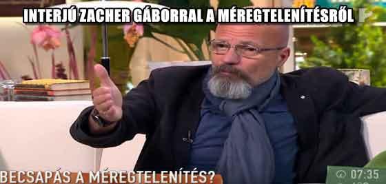 INTERJÚ ZACHER GÁBORRAL A MÉREGTELENÍTÉSRŐL