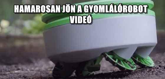 HAMAROSAN JÖN A GYOMLÁLÓROBOT - VIDEÓ