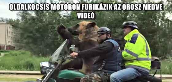 OLDALKOCSIS MOTORON FURIKÁZIK AZ OROSZ MEDVE - VIDEÓ